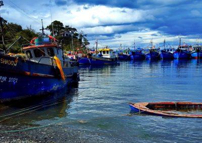 Bahia Mansa, Punta Arenas
